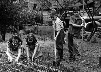 Cleveland Public School students in their victory garden, May, 1942